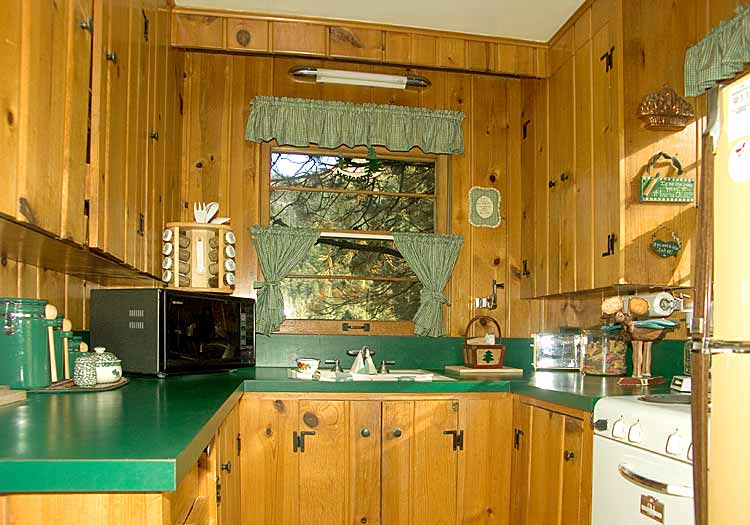 Kitchen cabinet ideas for cabins home christmas decoration for Small cabin kitchen designs